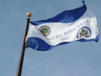 blue-ribbon-flag